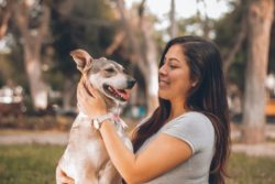 Can dog get coronavirus? Check out most recent and updated information on how to keep safe your family and your pet during COVID-19 pandemic