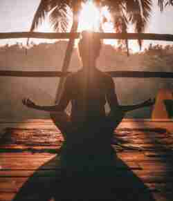 Providing a lot crucial health benefits, CBD wellness for body and mind can change the way you live and enjoy your life.