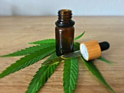 Here are three simple and easy tips on how to store CBD oil and maximize its shelf life, so you can enjoy CBD benefits for longer.